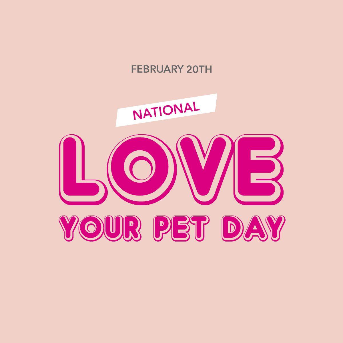 Show me your pets!!
