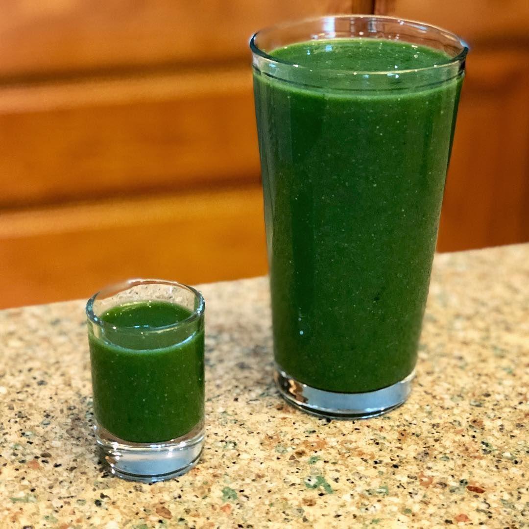 detox shake amostra grátis