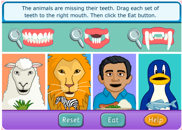 KS2 Compare different animal teeth why do they have