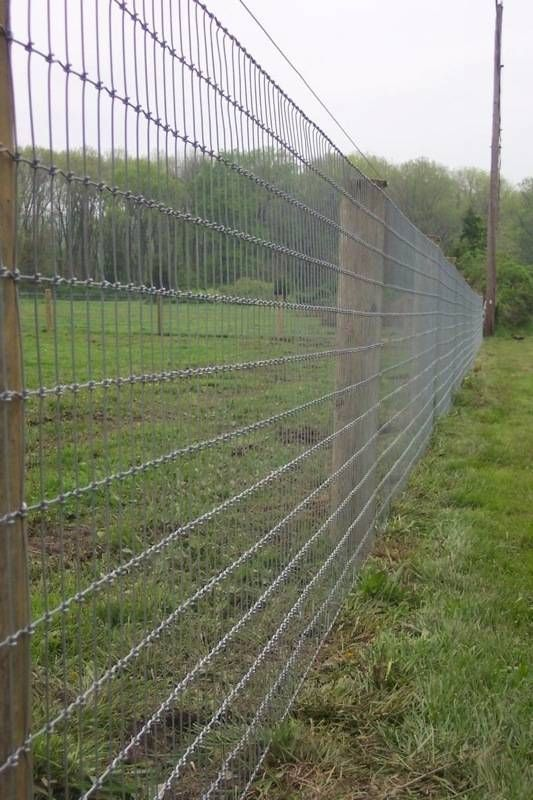 Woven Wire Fence Close Up Wire Fence Backyard Fences Farm Fence