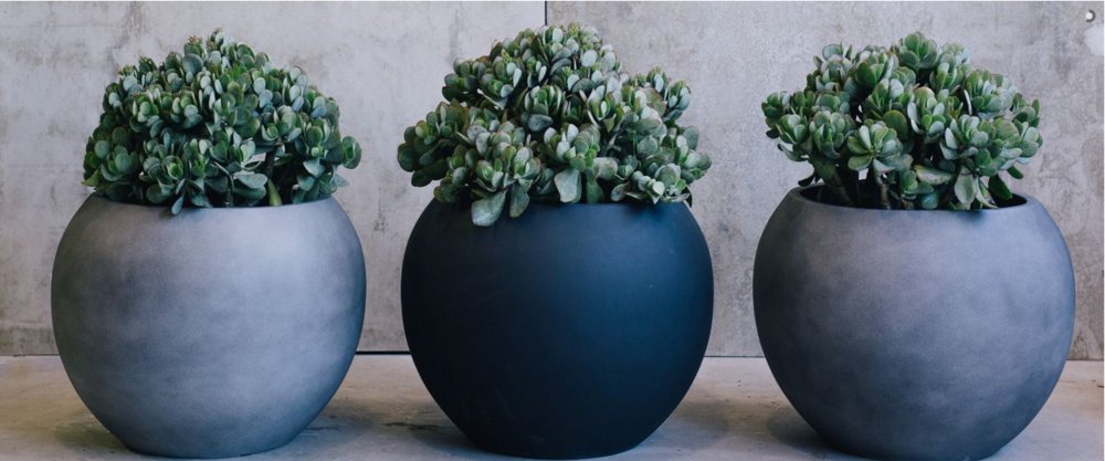 The Balcony Garden Have The Most Gorgeous Range Of Designer Pots
