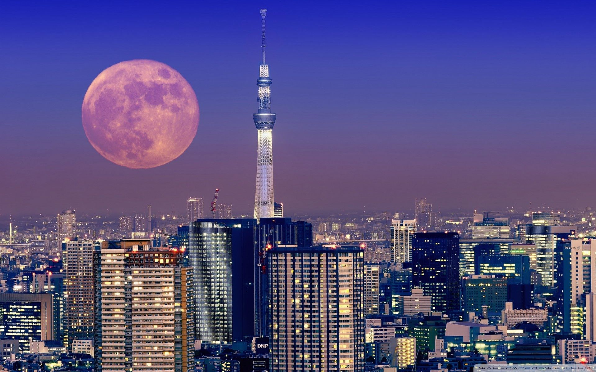 Tokyo Desktop HD Wallpapers THIS Wallpaper
