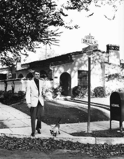 Cary Grant was a known cat fan - he walked one of his old friends (a Siamese) on a leash around his Beverly Hills neighborhood.