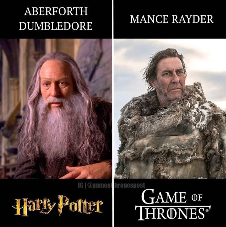 Actors In Both Harry Potter And Game Of Thrones Harry Potter Jokes Harry Potter Games Harry