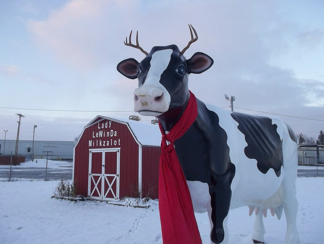 Lowville Ny Cheese Factory Roadside Attractions Favorite Places Hometown