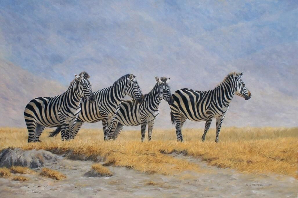 ZebraHorse painting by David Stribbling