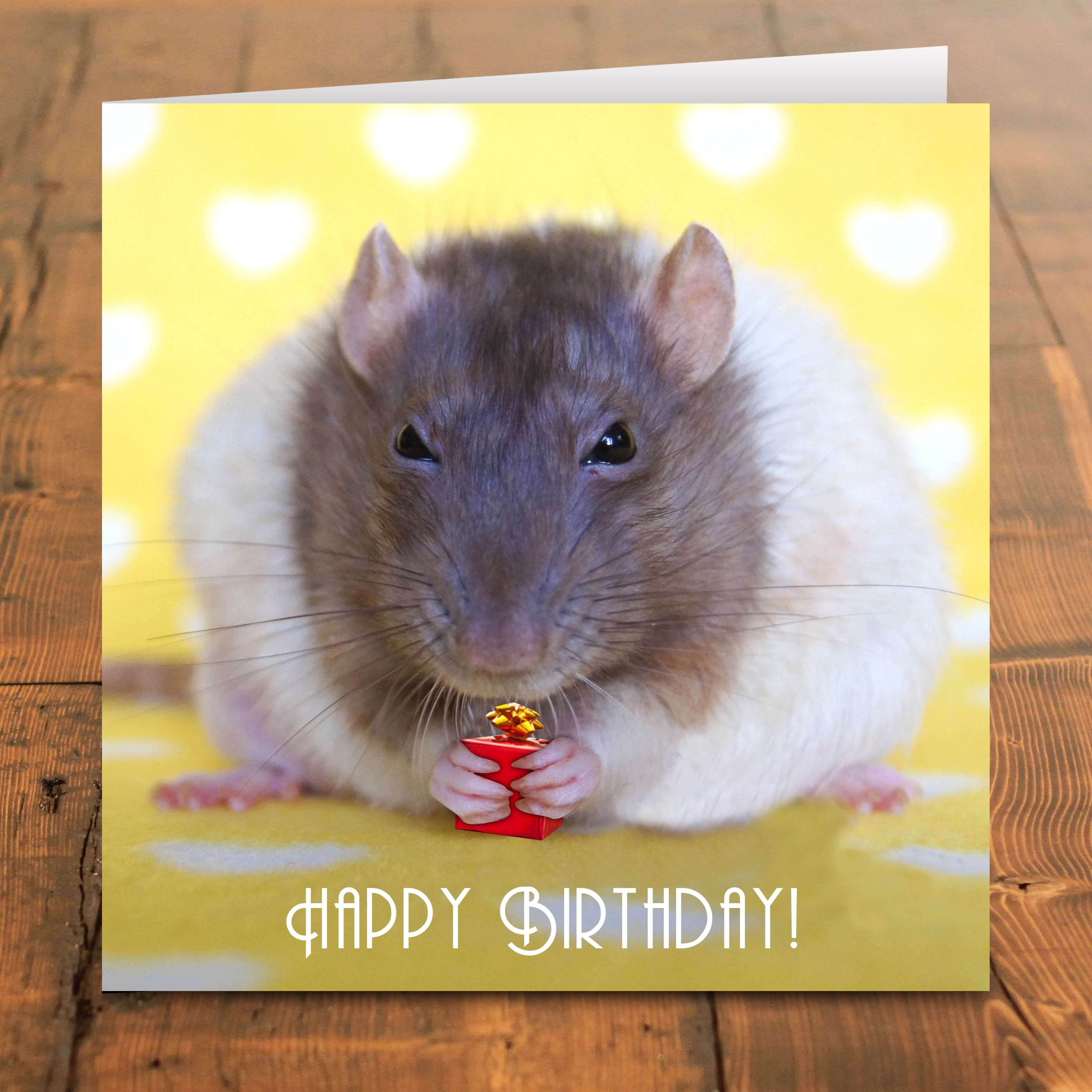 Beautiful happy birthday card for facebook images eccleshallfc happy birthday card 2 50 rat lovers greetings cards kristyandbryce Image collections