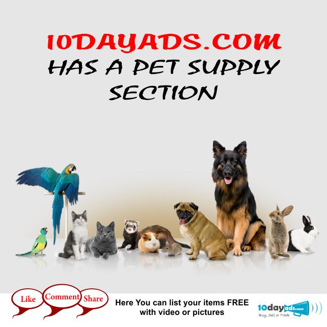 10dayads.com has a pet supply section #PetAds #PostAdsForPet #OnlinePetAdsPosting #PetClassifiedAds