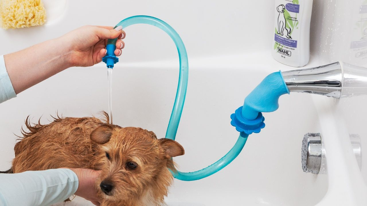 Pet Shower Sprayer Cleaning Attachment By Rinseroo The Grommet Shower Head With Hose Sprayers Shower Hose