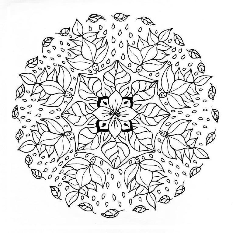 Mandala Para Pintar Flores Y Duendes Com Imagens Mandalas