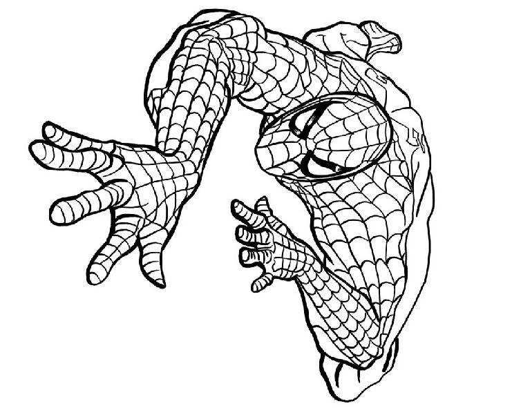 coloriage spiderman colorier dessin imprimer