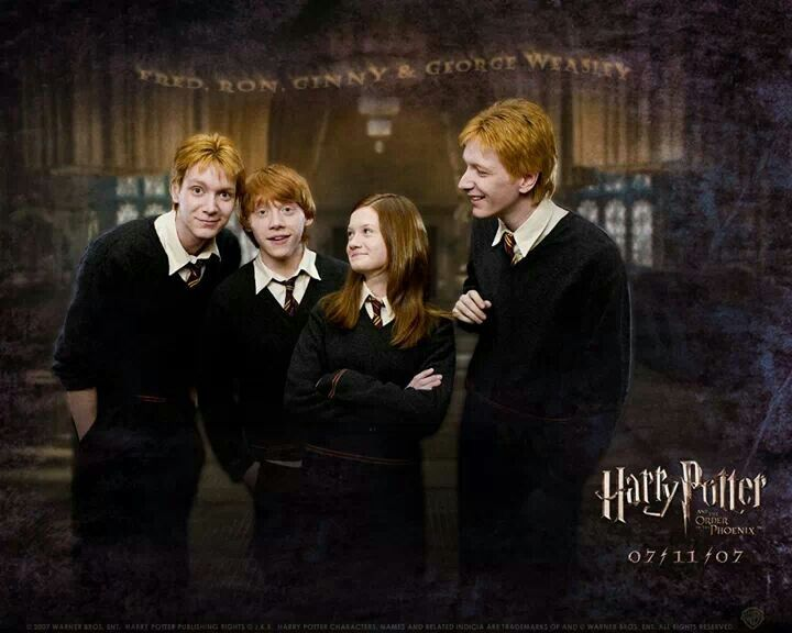 Harry potter order of the phoenix weasley family