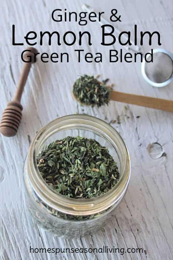 Photo of Ginger Lemon Balm Green Tea Blend