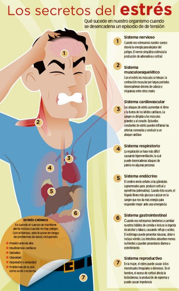 el estrés puede causar impotencia