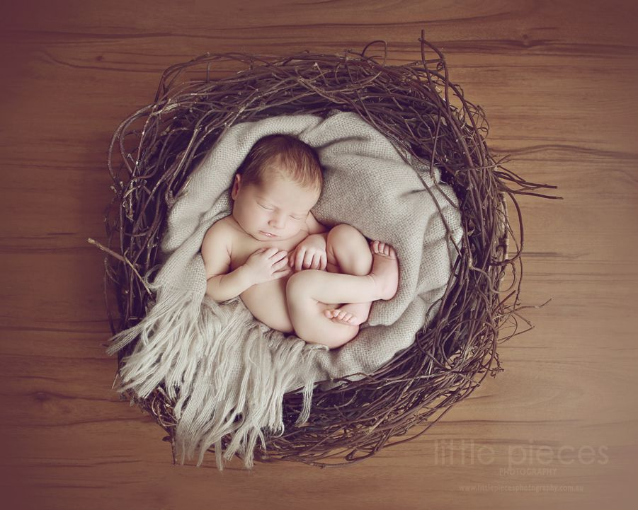 how to make newborn photo props