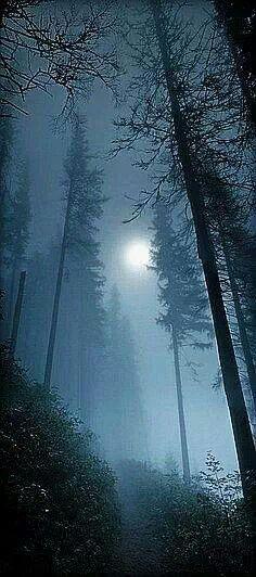 Full moon shining through a foggy night.