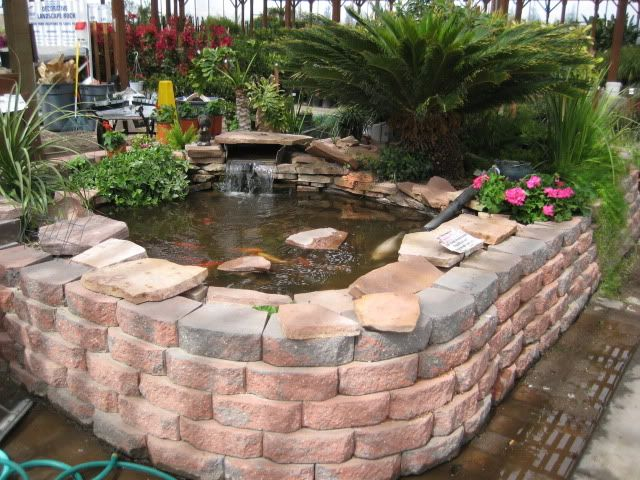 Above ground pond is just stunning garden ideas for Raised koi pond ideas
