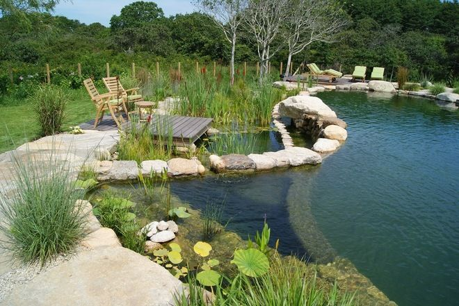 Natural Swimming Pools Use Plants Or A Combination Of Plants And Sand Filters To Keep The Water