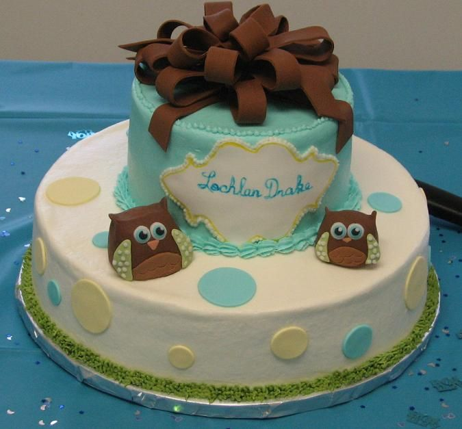 Baby Shower Cakes For A Boy With Owls Shower Cake Baby Shower