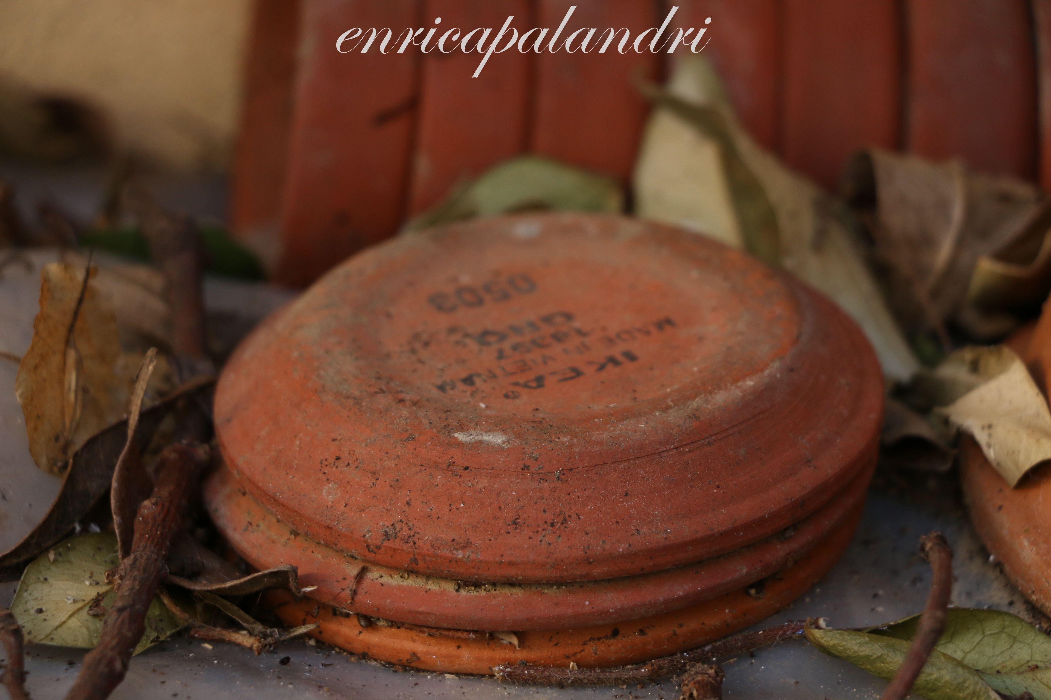 in giardino, vasi e sottovasi