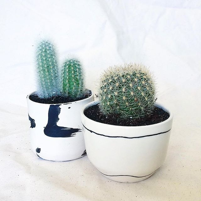 Cactus time means fair time! Excited to be participating in my first and only LA craft fair this season @uniquemarkets tomorrow and Sunday. I'll have lots of one of a kinds and seconds with me. Looking forward to seeing lots of new faces! ✌️️