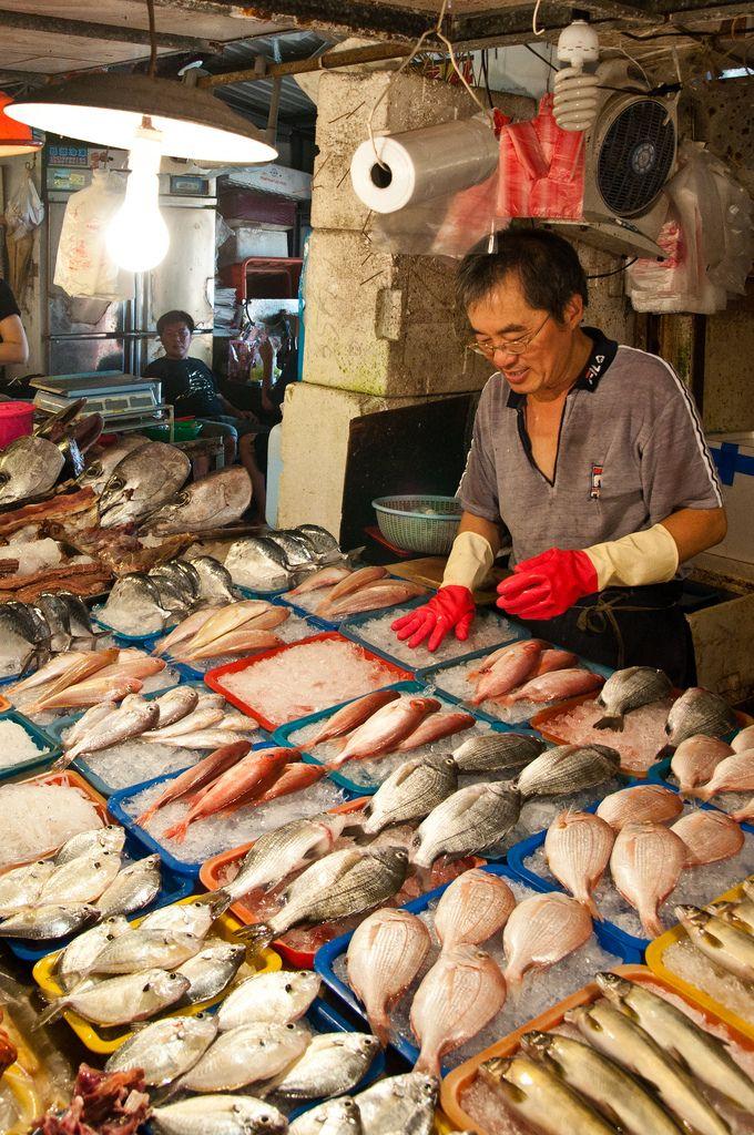 Donggang Fish Market Fish Traditional Market Seafood Market