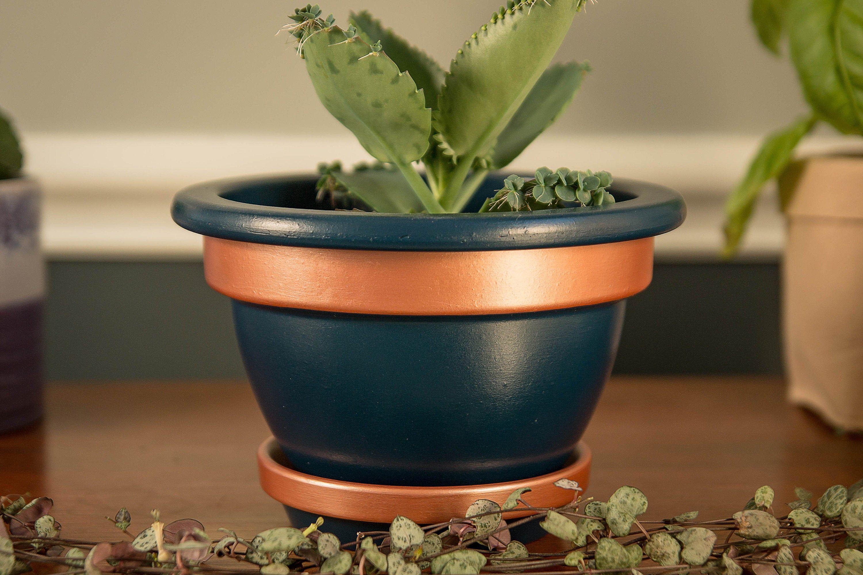 Lunae Hand Painted 6 1 2 Inch Acrylic Bell Pot Navy And Rose Gold Decorative Pot Succulent Pot Terracotta Pot Flower Pot Home Decor In 2020 Succulent Pots Decorative Pots Terracotta Pots