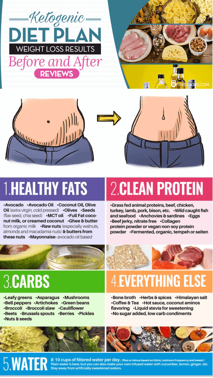 high protein foods for low carb diet