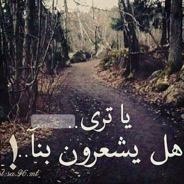 عبارات عتاب الزوج عتاب للزوج عتاب عتاب زوجي Words Arabic Calligraphy Calligraphy