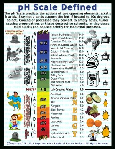 Understanding Ph Scale  Ph Scale  Ph Scale    Ph And