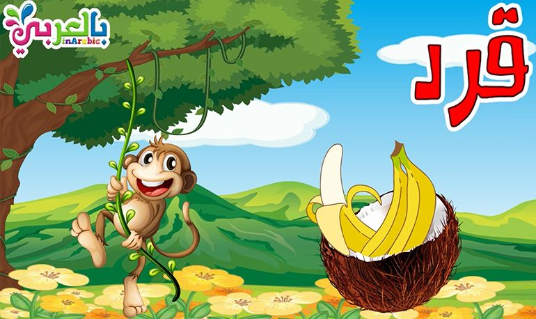 معلومات عن القرد للاطفال حيوانات الغابة Creative Posters Character Zelda Characters