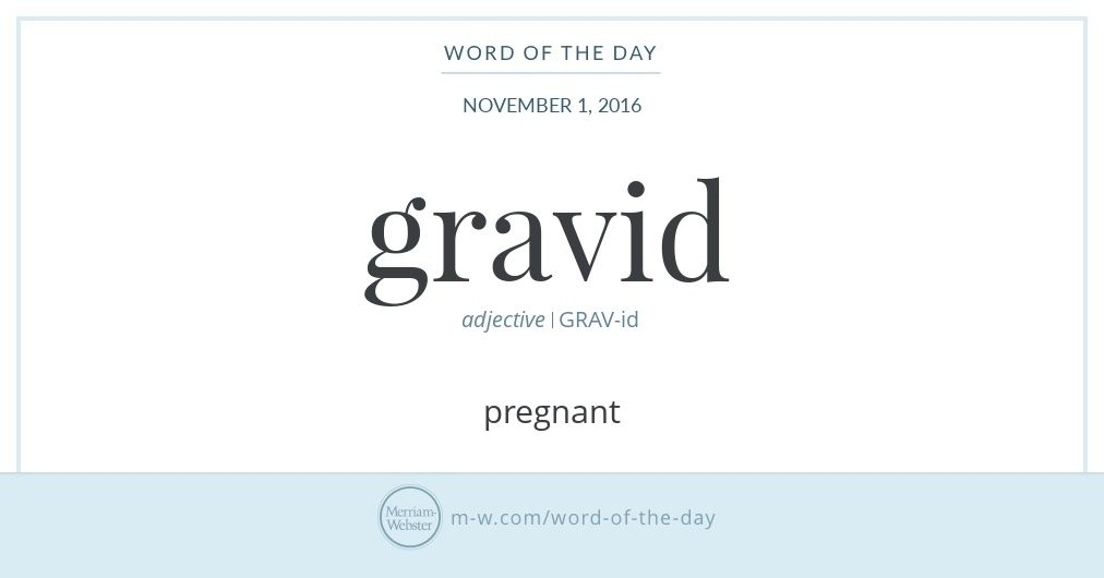 Gravid Comes From Latin Gravis, Meaning U0027heavy.u0027 It Can Refer To A Female  Who Is Literally Pregnant, And It Also Has The Figurative Meanings Of  Pregnant: ...