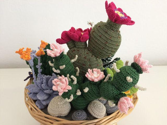 Amigurumi Cactus Tejido A Crochet Regalo Original : Il di sam composizione di piante grasse all uncinetto