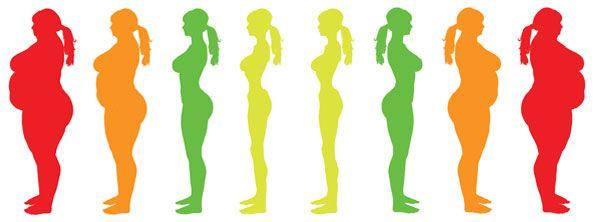 الوزن المثالي والوزن المناسب وحساب كتلة الجسم للنساء Jewelry Lei Necklace Necklace