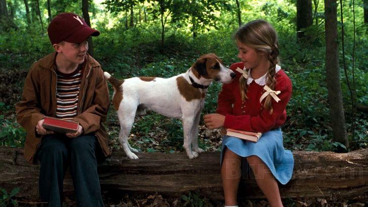My Dog Skip Kids Movies Blu Ray Movies Frankie Muniz