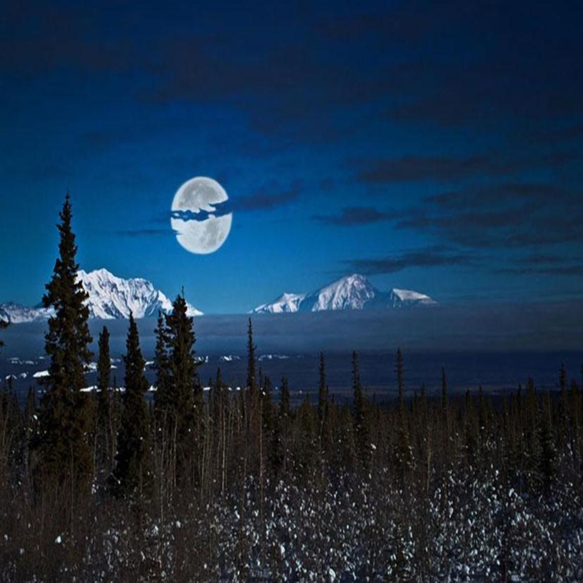 Alaska Night