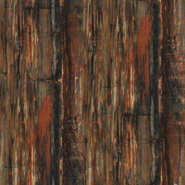 3474 Petrified Wood Wood Etching Petrified Wood Wood Countertops