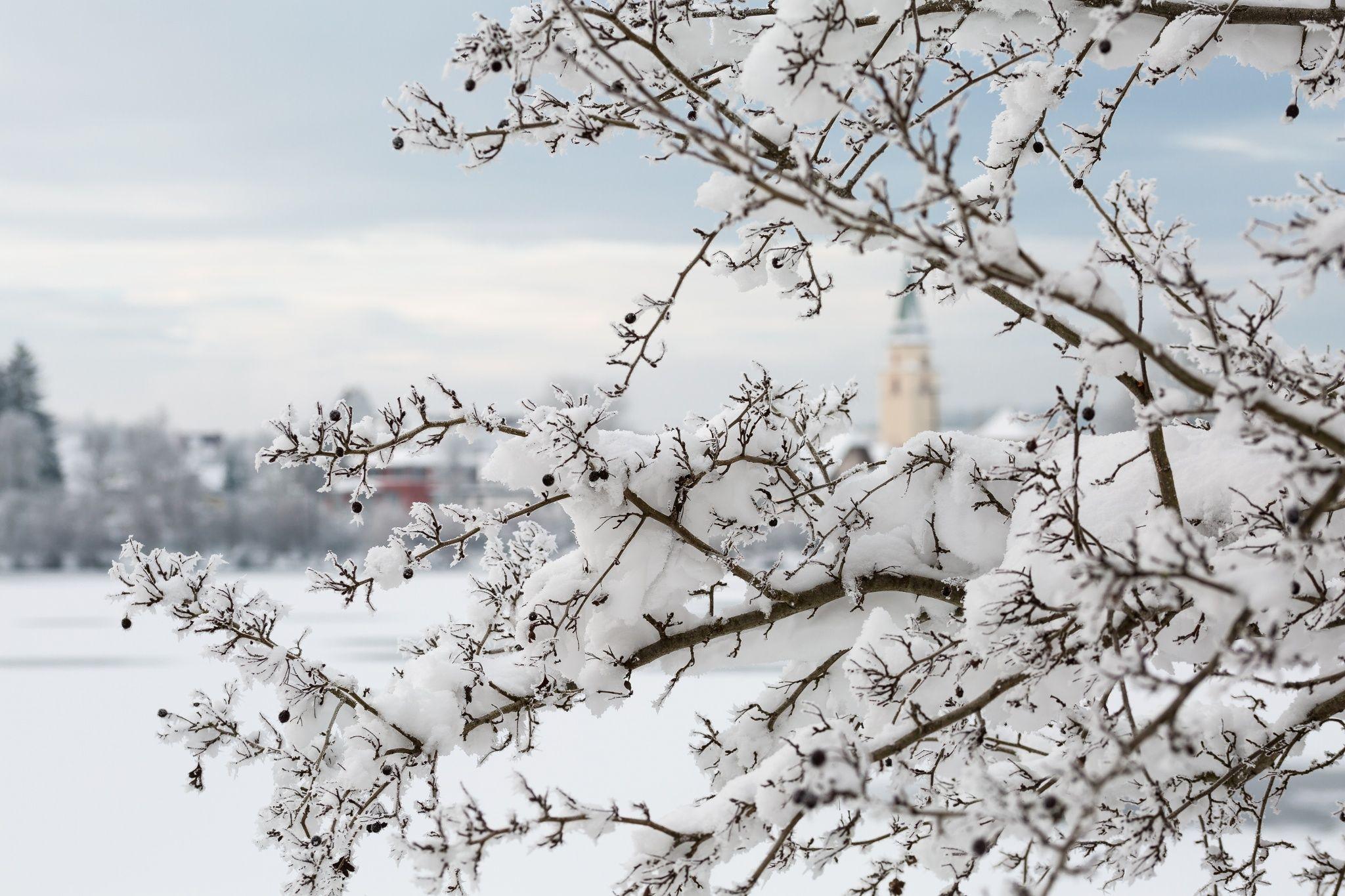 Winter in Hüfingen by Ralf Bitzer on 500px