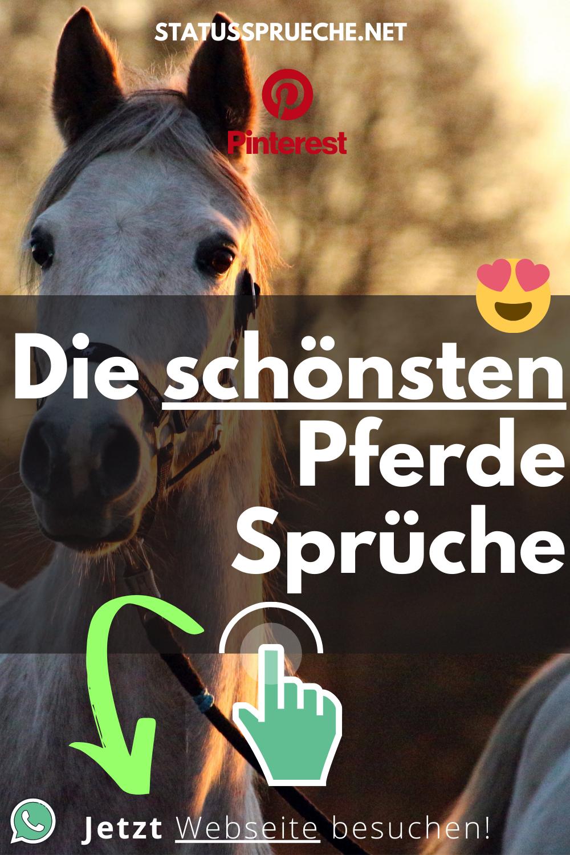 Pferde status sprüche Kostenlose SMS