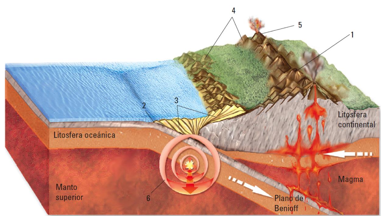 Cordillera De Los Andes Autor Desconocido La Orogénesis Es La Formación O Rejuvenecimiento De Un Orógeno Una Tectonica De Placas Capas De La Tierra Planos