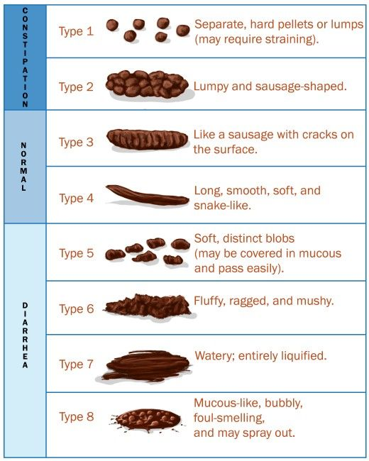 Modified bristol stool chart type is an addition also abnormalities mucus blood and color with pictures cute rh pinterest
