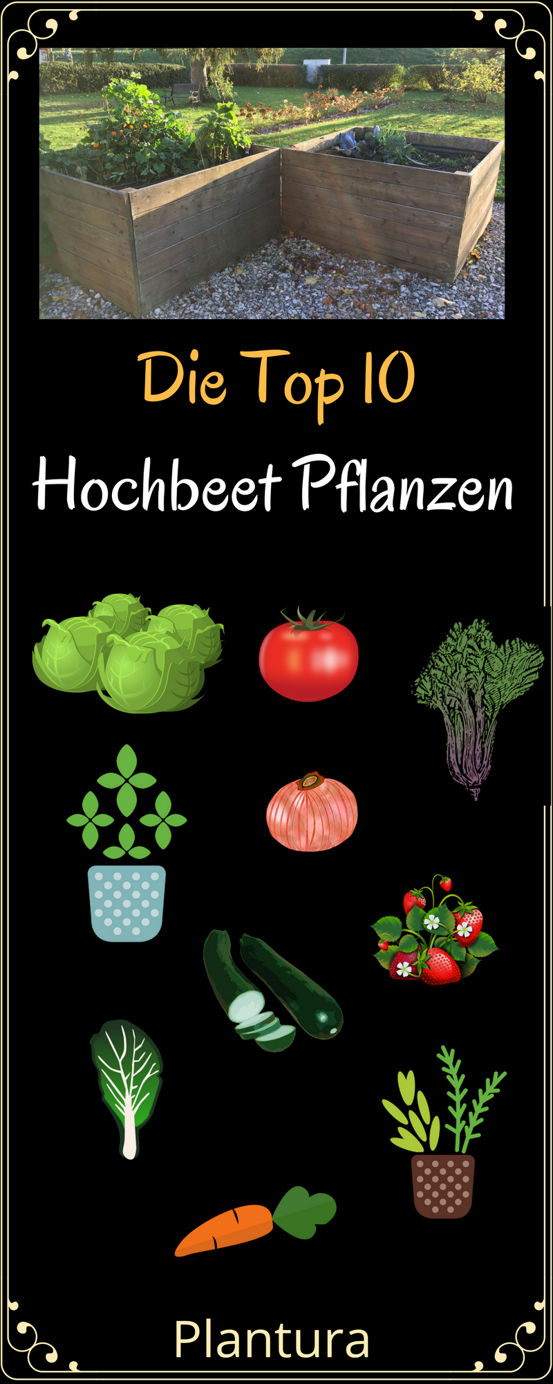 die top 10 der besten hochbeet pflanzen garten pinterest gardens garten and gardening hacks. Black Bedroom Furniture Sets. Home Design Ideas