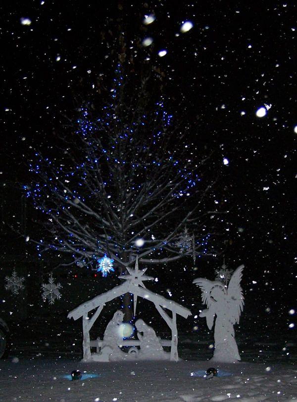 Improvements Hsn Christmas Yard Decorations Decorating With Christmas Lights Christmas Decorations Diy Outdoor