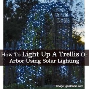 decorating a trellis for a wedding how to light up a trellis or arbor using solar lighting 3355