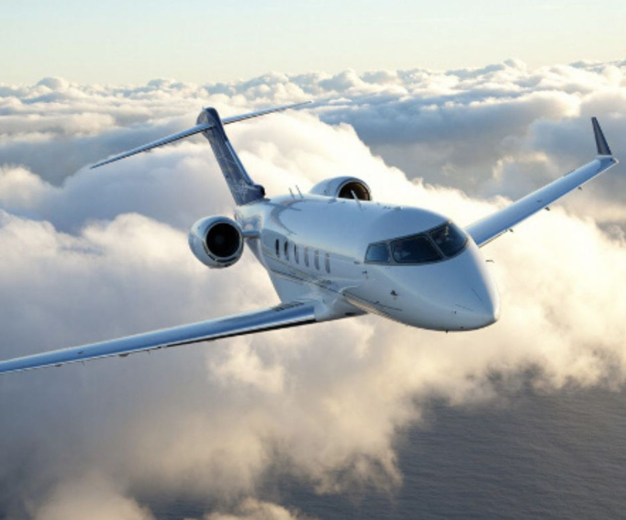 Meet the Bombardier Challenger 300. This jet can fly eight