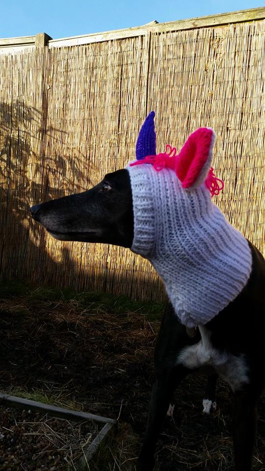Greyhound Fancy Dress Unicorn Hat Knitting Pattern Free UK postage