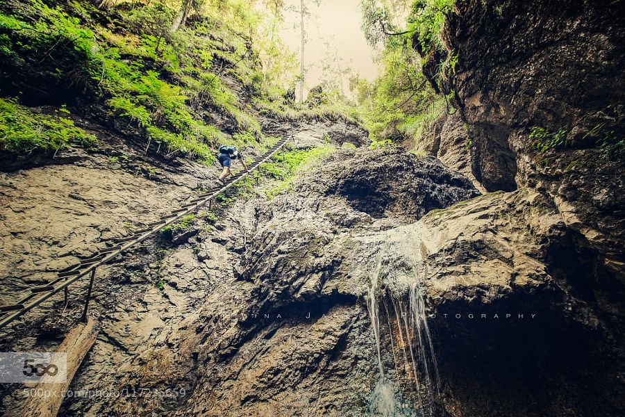 Adventure by Janega_Edina #nature