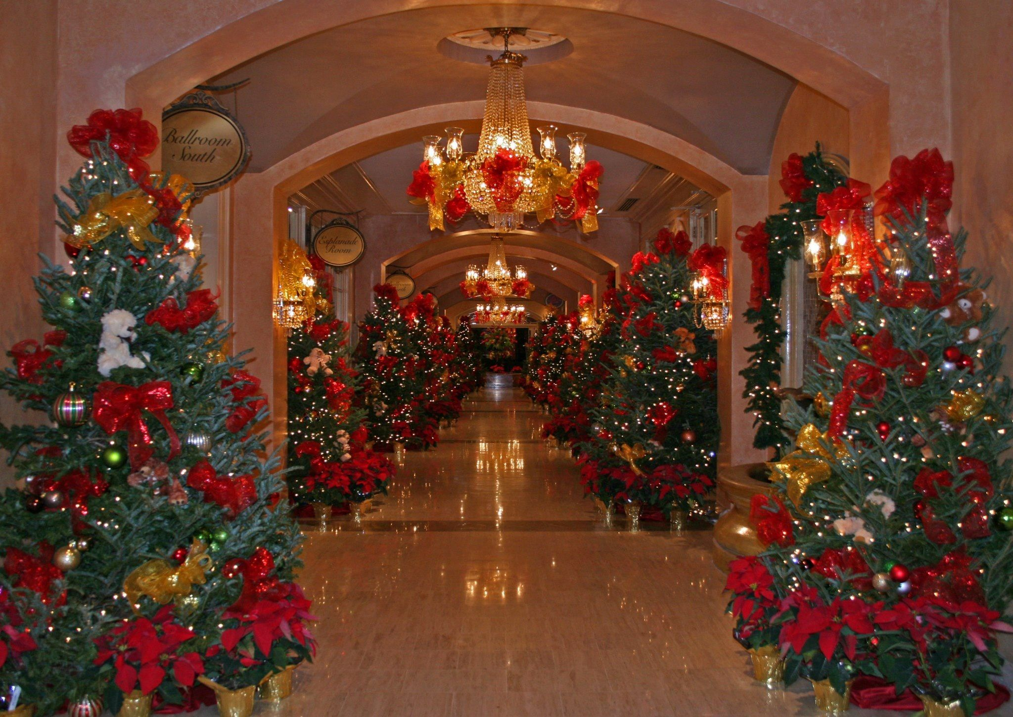 Christmas Tree Lane at the Royal Sonesta Hotel New Orleans all December long
