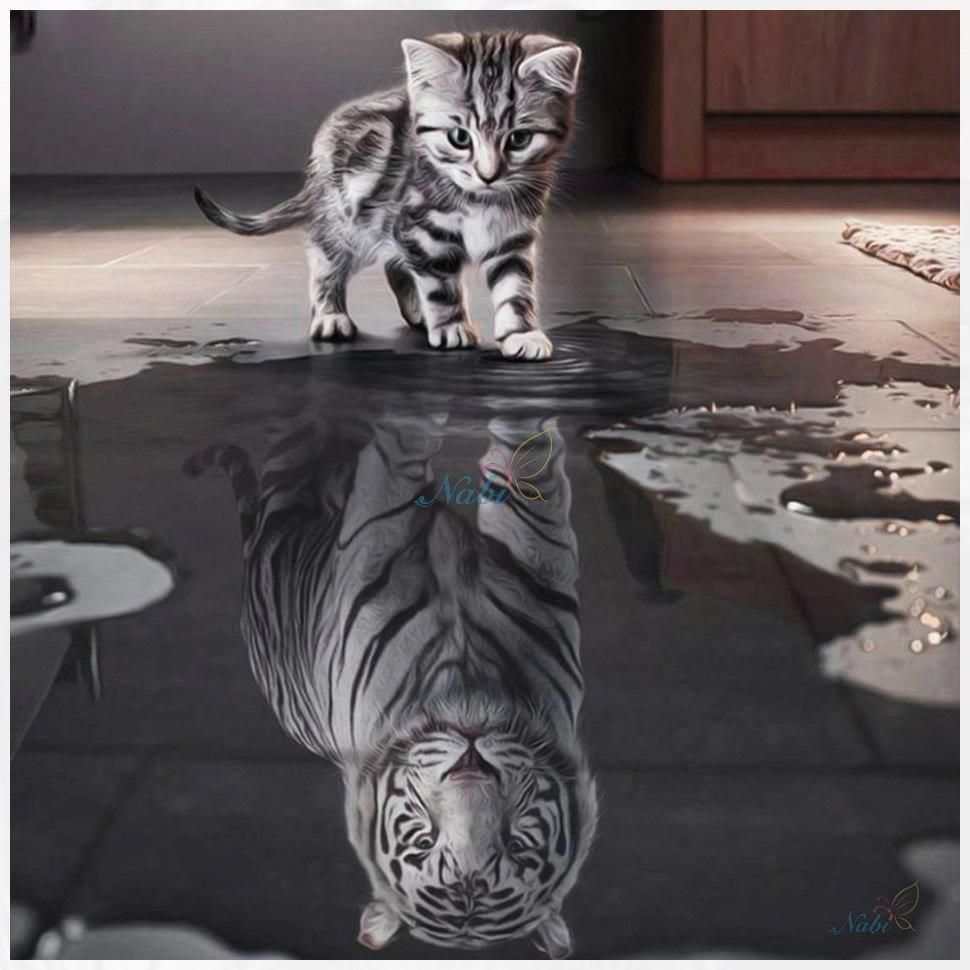 Kitten And Tiger Reflection Diamond Painting Kit Cute Animals Animals Beautiful Cute Cats