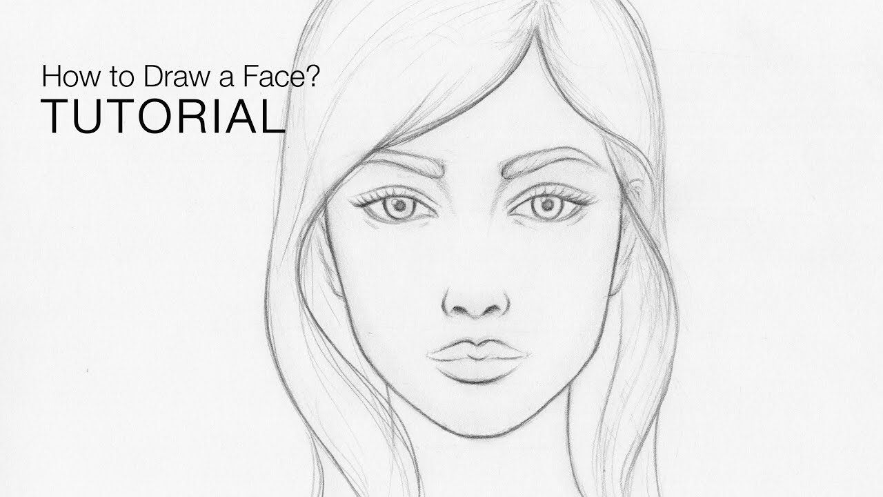 How To Draw Faces For Beginners Basic Proportions Easy